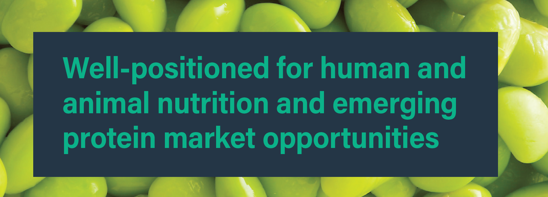 Well-positioned for human and animal nutrition and emerging protein market opportunities