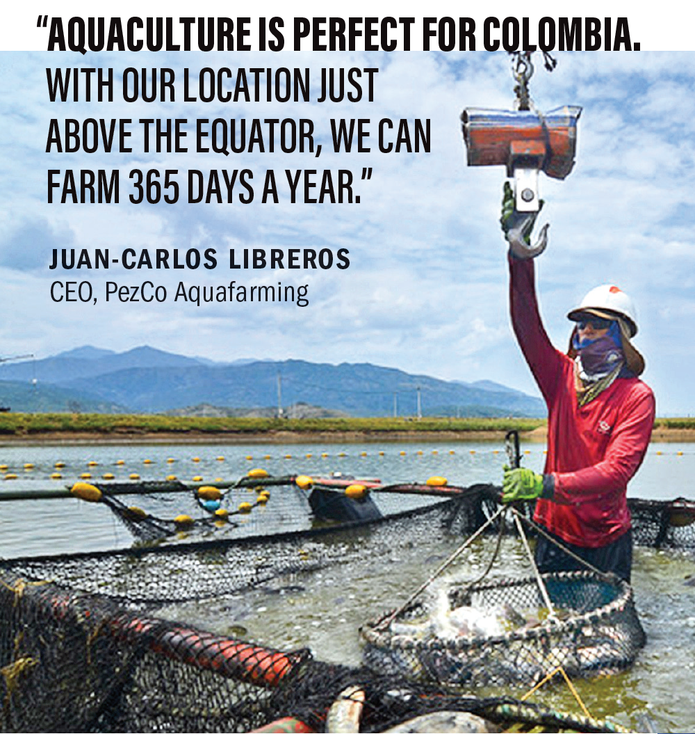 """Aquaculture is perfect for Colombia,"" says Juan-Carlos Libreros, chief operating officer. ""With our location just above the equator, we can farm 365 days a year. Plus, tilapia is a fish that, when provided the right conditions, rewards us with great performance."""