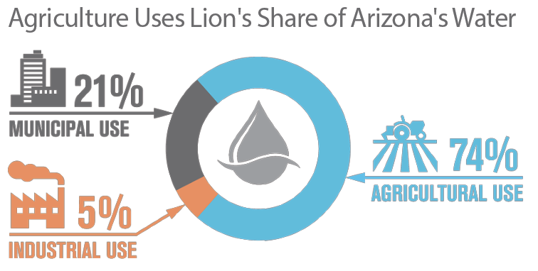 Agriculture Uses Lion's Share of Arizona's Water