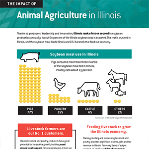 Impact of Animal Ag in Illinois